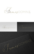 Logo Design James Domine