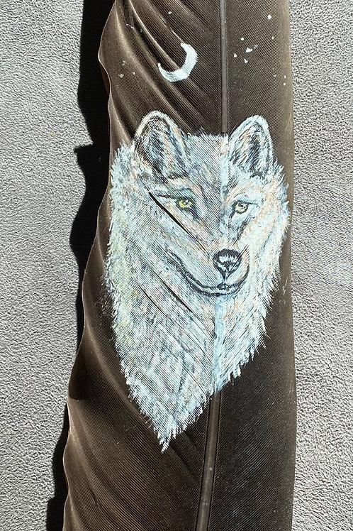Plume d'aigle Loup