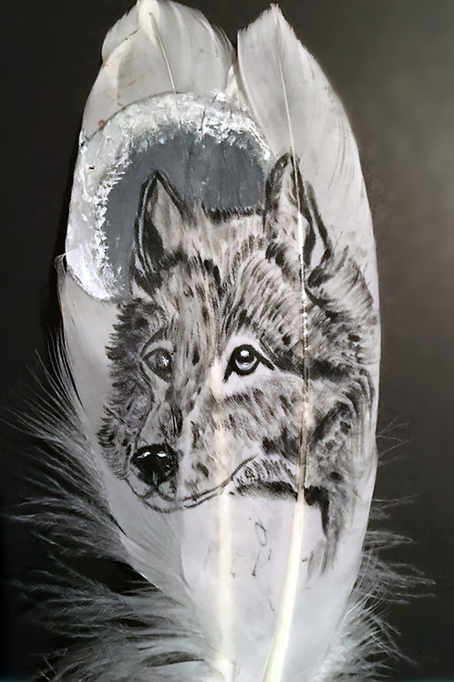 Plume peinte - Loup & Lune