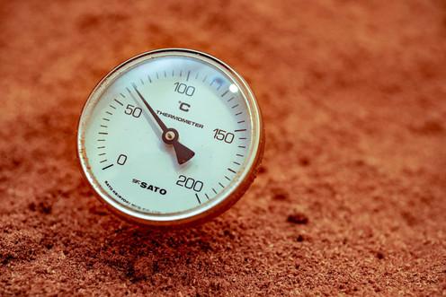 酵素内温度
