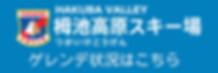 白馬 hakuba HAKUBA SKI 栂池 栂池高原 レンタル スキー スノーボード 団体 長野県 スノボ 手ぶら 安い おすすめ つがいけ 最新レンタル 個人 格安 親切 ゲレンデ 近く