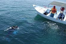 メキシコ海洋DSC01591.JPG