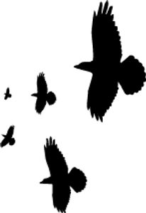 Vogel-Silhouetten