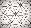 Flower of Life spiritual guidance
