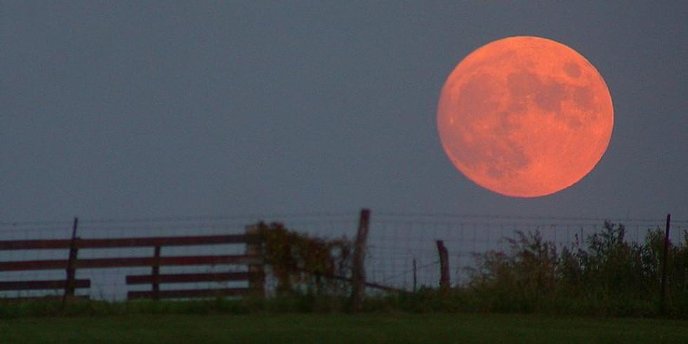 Full Moon Meditation $12
