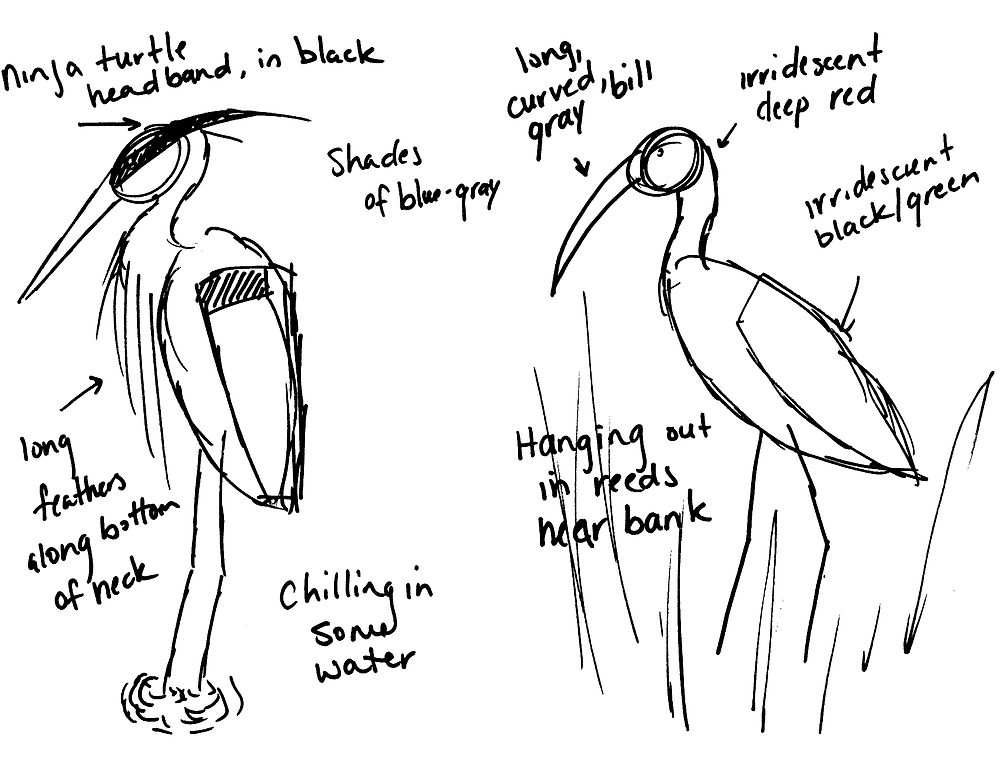Rough sketches of Great Blue Heron (left) and Glossy Ibis (right). Heron notes, starting upper left and going clockwise: Ninja turtle headband in black, shades of blue-gray, chilling in some water, long feathers along bottom of neck. Glossy Ibis notes, starting from upper left going clockwise: long, curved, gray bill, iridescent deep red, iridescent black/green, hanging out in reeds near bank.