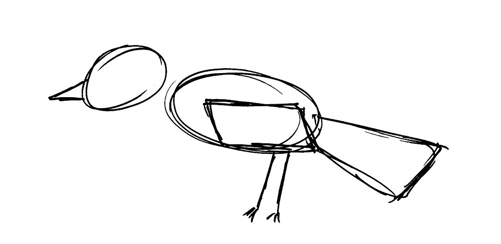 A very rough sketch of an unidentifiable bird species