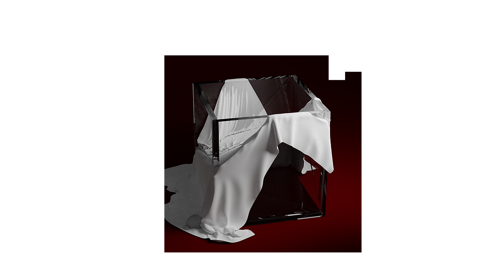 cube and 2 cloths en cours.png