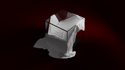 Cube And 2 Cloths (The Veil)