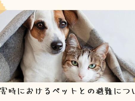 災害時におけるペットとの避難について