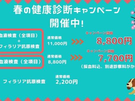 春の健康診断キャンペーン開催中!
