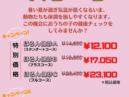 秋のほるん健診キャンペーン!