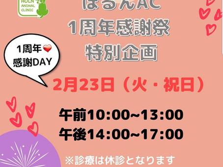 【開催日時について】ほるんAC1周年感謝DAY特別企画♪