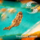 Treasure Island 1600x1600.jpg