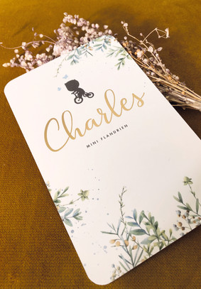 Charles1.jpg