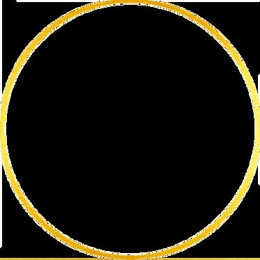 —Pngtree—circle golden frame_4844512.png