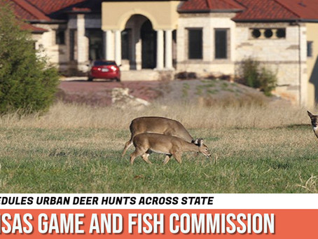 Arkansas Game and Fish Commission scheduled urban hunts across state