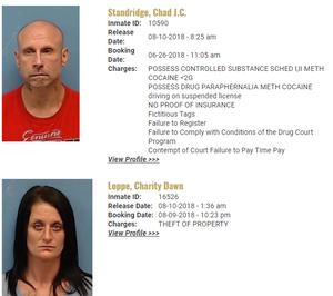 Pope County Mugshots: April 10-11