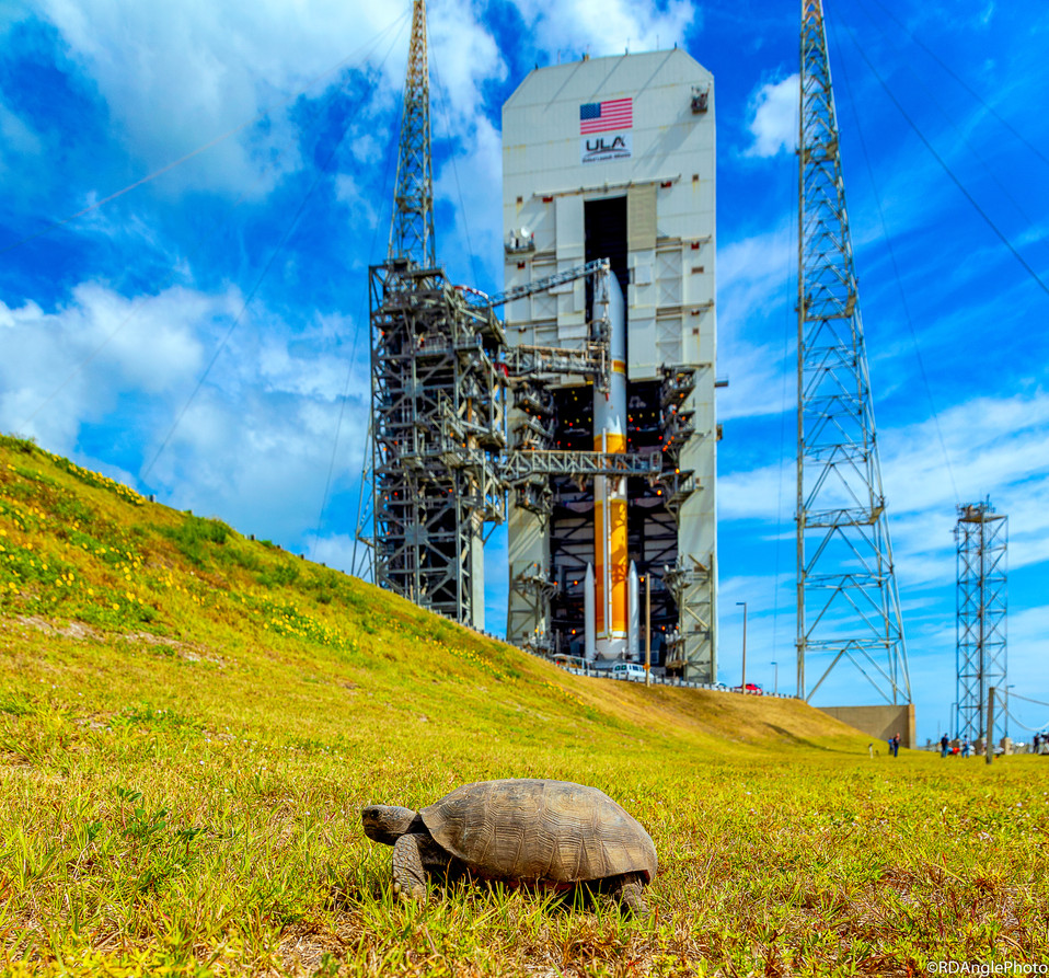 ULA's Delta IV rocket ready to launch the WGS-11 satellite
