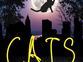 It's all about CATS the musical this week!