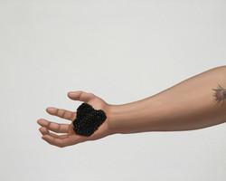 Food Fight: Caviar