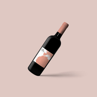 Wine labels I designed for wine sold to raise money for an organisation that provided equipment and infrastructure for a school in Banjul.