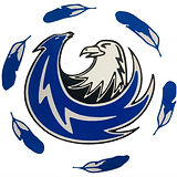 ACESS logo.jpg