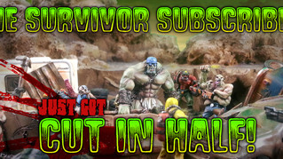 Subscribe to Survive the wastes!