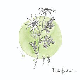 Nicole Berlach x Central Coast Collective