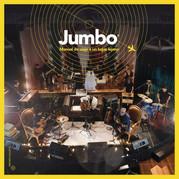 Jumbo-Manualde vuaje 500x500bb-60.jpg