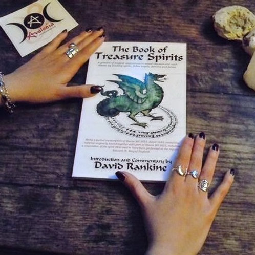 The Book Of Treasure Spirits by David Rankine