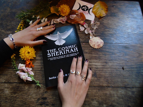 The Cosmic Shekinah by Sorita d'Este and David Rankine