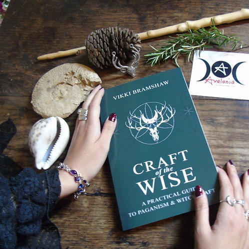 Craft Of The Wise by Vikki Bramshaw