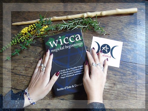 Wicca Magickal Beginnings by Sorita d'Este and David Rankine