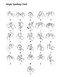 Makaton Finger Spelling Chart.PNG