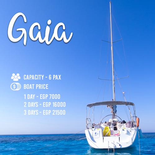 Cover Gaia copy.png