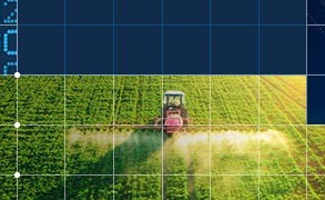 What the Charts Are Telling Us About the Grain and Oilseeds Markets