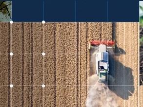 Analysis of Grains & Oilseeds Markets webinar
