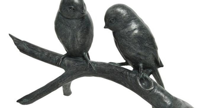 Oiseau poly