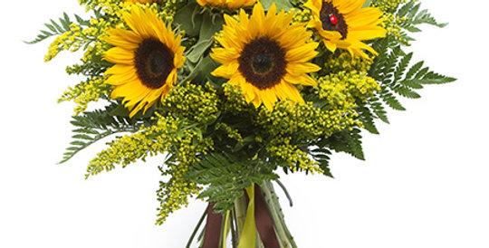 Le Bouquet du Soleil