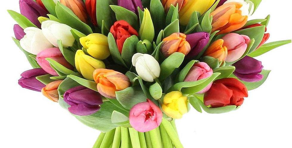 Bouquet de 40 tulipes mix couleurs