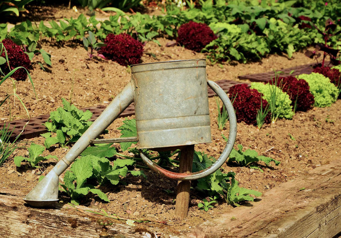 How is Insulin and Gardening Connected?