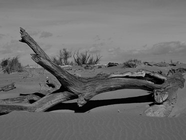 De la terre à la mer puis dans le sable.