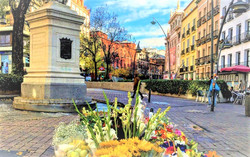 Plaza Tirso de Molina 1