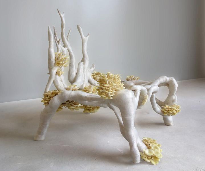 Erik Klarenbeek tarafından tasarlanan, biyo-tasarımın ikonu