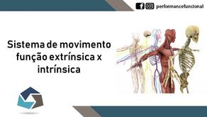 Sistema de Movimento - função extrínseca x intrínseca