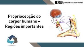Propriocepção do corpo humano - regiões importantes