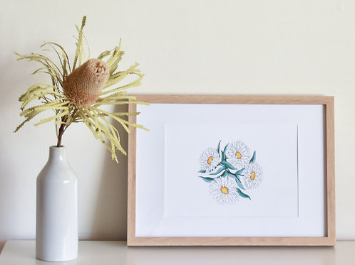Print - Paper Daisies
