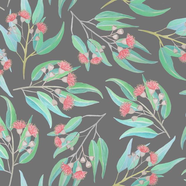 Flowering Gum- Grey
