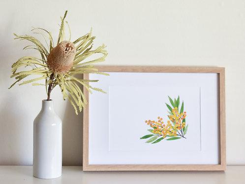 Print - Golden Wattle